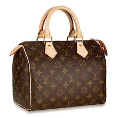 LV  Speedy Size 25 M41528 (Super Fake)